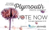 A graphic advertising voting for the 2019 Picture Plymouth photo contest.