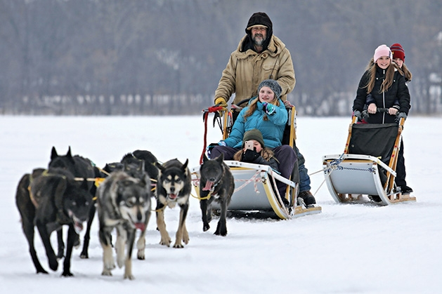 Sled dog rides at Plymouth's Fire & Ice Festival