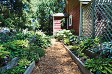 A garden featuring hostas, edibles, astilbe and hydrangeas.