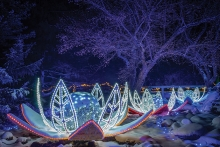 The Winter Lights display at the Minnesota Landscape Arboretum.