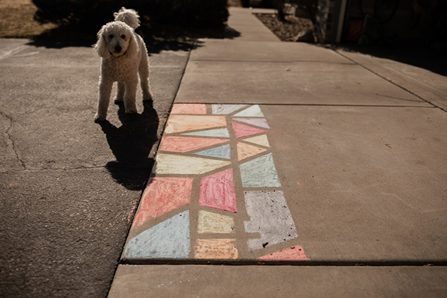 The Grocholski family dog poses by the sidewalk chalk mural.